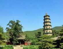 中国著名古佛塔合集 (28)